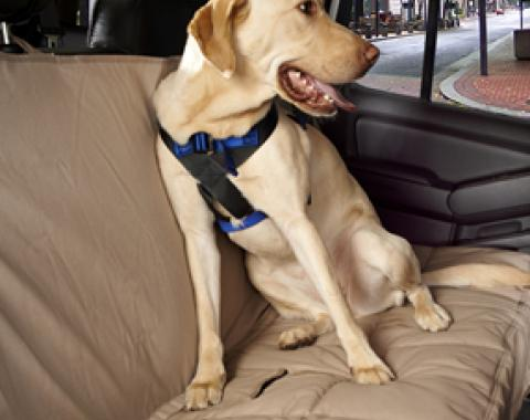 Canine Covers® Travel Safe Harness